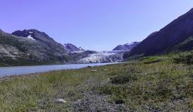 Geike冰川和入口 库存照片
