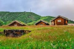 GEILO, NOORWEGEN - JULI, 2015: Oude traditionele framehouses met gras op het dak in het midden van vallei, Geilo, Noorwegen Royalty-vrije Stock Afbeeldingen