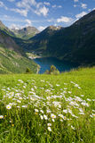Geiranger Fjord. View of the famous Geiranger Fjord in Norway Royalty Free Stock Photo