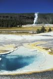 Geiser in Nationaal Park Yellowstone stock afbeelding