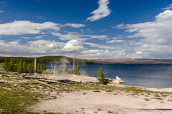 Geiser in Yellowstone Stock Foto's