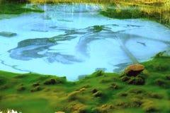 Geisermeer in de hooglanden van Altai Stock Afbeeldingen
