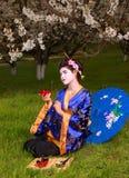 Geisha Foto de archivo libre de regalías