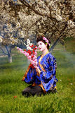 Geisha Photo stock
