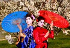 Geisha Image libre de droits