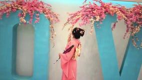 Geisha stock video