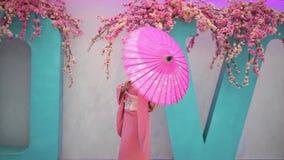 Geisha stock footage