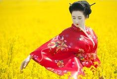 Geisha auf dem gelben Gebiet Stockfotografie