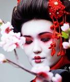 Geisha bonito joven en kimono negro entre Sakura, cierre asiático del ethno para arriba Fotografía de archivo