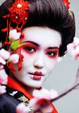 Geisha bonito joven en kimono negro entre Sakura, ethno asiático Fotos de archivo