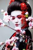 Geisha bonito joven en kimono negro entre Sakura, ethno asiático Foto de archivo libre de regalías