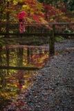Geisha con l'ombrello su un piccolo ponte di legno nella foresta immagine stock