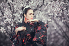 Geisha en kimono rojo en Sakura fotos de archivo libres de regalías