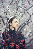 Geisha en kimono rojo en Sakura foto de archivo libre de regalías