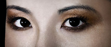 Geisha Gaze Royalty Free Stock Photography