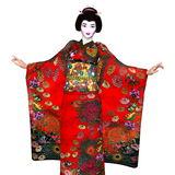 Geisha girl Royalty Free Stock Images