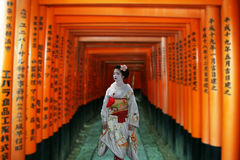 Geisha i inari royaltyfria foton