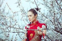 Geisha im roten Kimono in Kirschblüte Stockbild