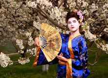 Geisha. Japanese geisha in blooming cherry garden Royalty Free Stock Image
