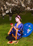 Geisha. Japanese geisha in blooming cherry garden Royalty Free Stock Photo