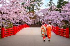 Geisha japonais avec la pleine floraison Sakura - Cherry Blossom au parc de Hirosaki au Japon images stock