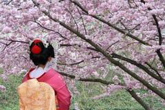 Geisha japonés Fotografía de archivo libre de regalías
