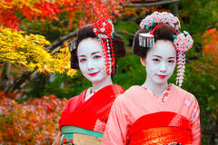 Geisha - Maiko in Gion District in Kyoto, Japan Royalty Free Stock Photography