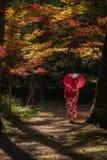Geisha mit Regenschirm im Wald während des Herbstes stockbild