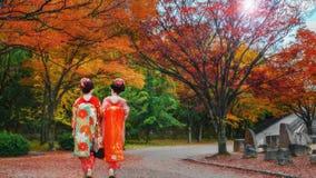 Geisha at Osaka Castle Park in Autumn Royalty Free Stock Photography
