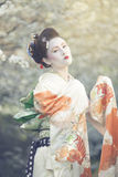 Geisha posing Stock Photography