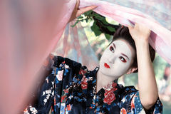 Geisha raising the pink curtains Stock Photography