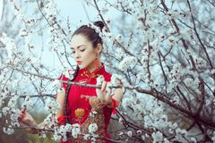 Geisha in red kimono in sakura. Attractive asian woman wearing kimono standing in blossoming garden. Gorgeous creative portrait outdoor on the nature stock photography