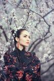 Geisha in rode kimono in sakura royalty-vrije stock foto