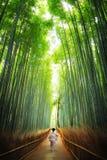Geisha som går till och med bambudungen Kyoto royaltyfria foton