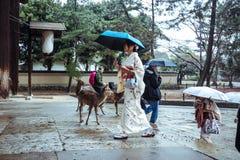 Geisha walking in the Deer  park