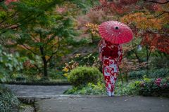 Geisha walking in the park in Autumn stock photography