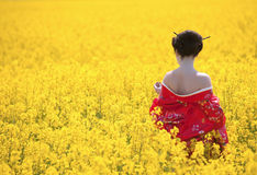 Geisha in the yellow field. Geisha in red kimono in the yellow field. Professional make-up, traditional hairstyle Royalty Free Stock Photography