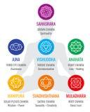 Geistige indische chakra Symbole, heilige Geometriereligions-Vektorikonen Lizenzfreies Stockbild