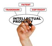 Geistiges Eigentum lizenzfreie abbildung