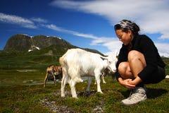Geit en wandelaar in Noorwegen Stock Afbeelding