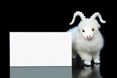 Geit of schapen met lege groetkaart Stock Foto's