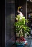 Gejsza w Gion okręgu Kyoto Japonia fotografia stock