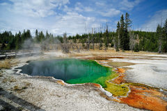 Gejzer przy Yellowstone Fotografia Royalty Free