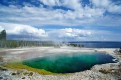 Gejzer przy Yellowstone Fotografia Stock