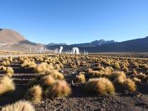 Gejzery Del Tatio, Atacama pustynia, Chile Obrazy Royalty Free