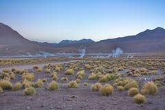 Gejzery w ranku na altiplano w Boliwia Fotografia Stock