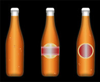 Gekühlte Bierflaschen Stockbilder
