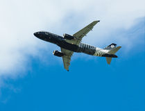 Gek over Rugby A320 stock foto