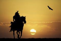 Gek paard bij zonsondergang vector illustratie