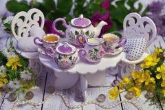 Gek theekransjeconcept met kleine lijst, stoelen, koppen en theepot en met wilde bloemen Royalty-vrije Stock Afbeelding
